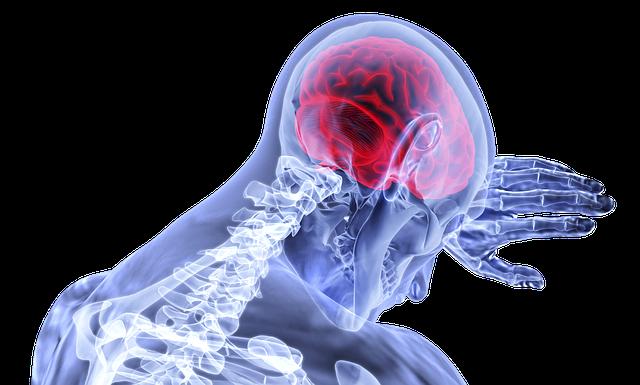 zánět v mozku
