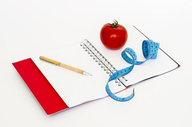 dietní zápisník