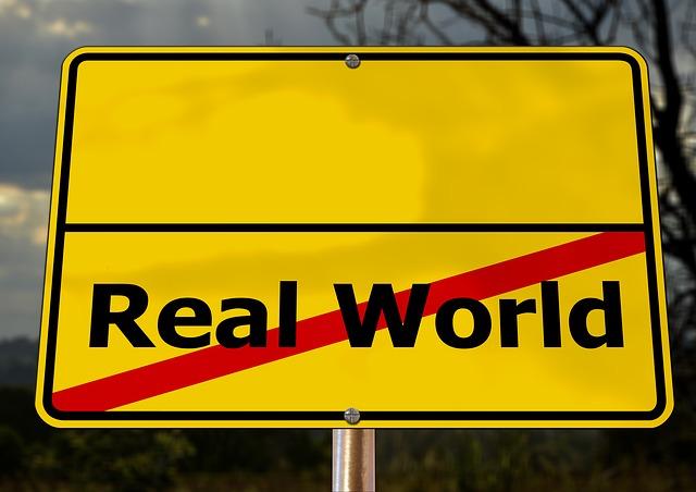reálný svět